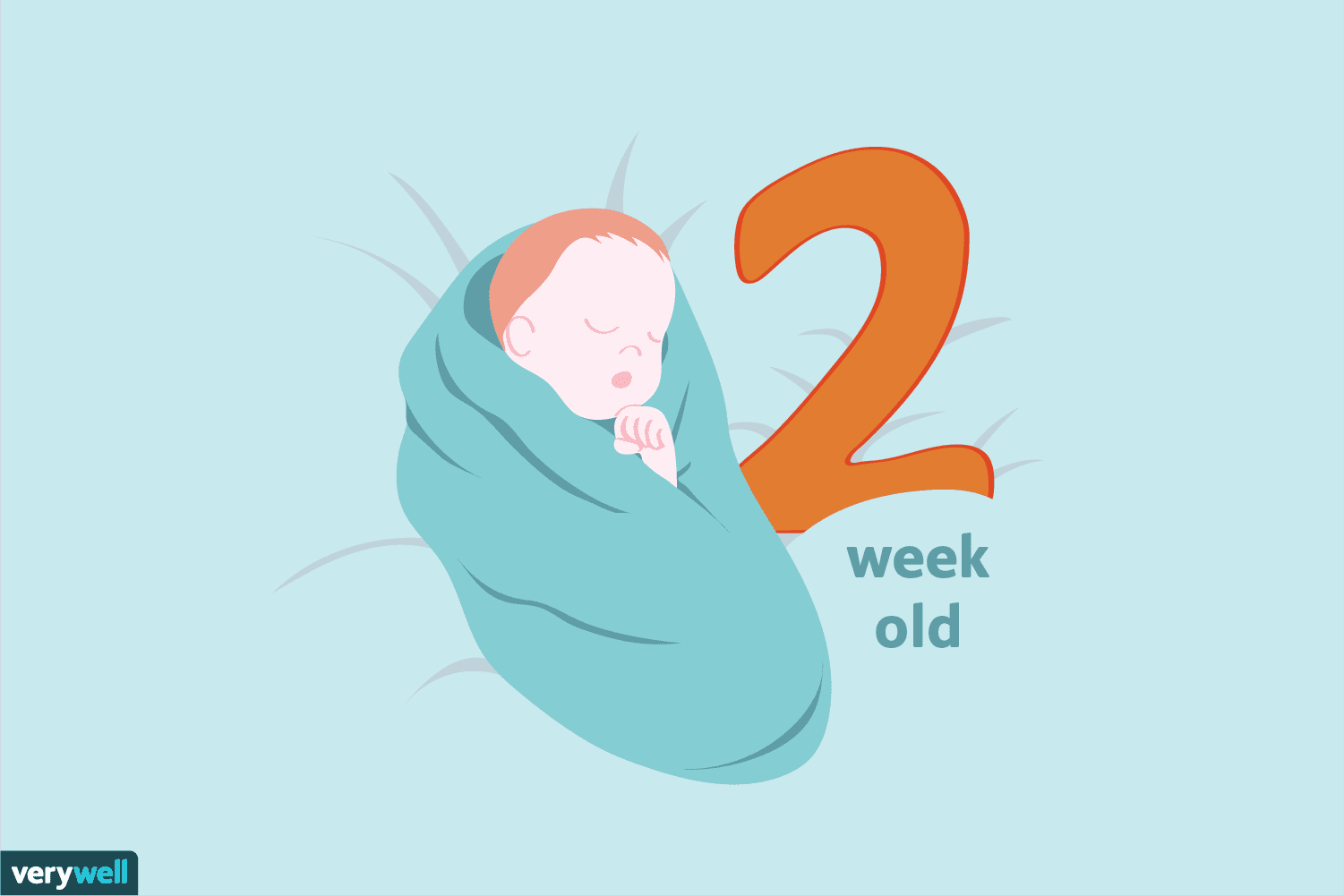 Your 2-Week-Old Baby: Development & Milestones