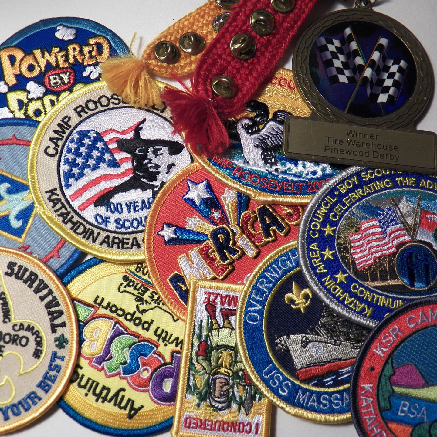 Overview Of Merit Badges Required For Eagle Scouts,Cute Turtle Names Boy