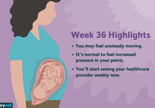 week 36 pregnancy highlights
