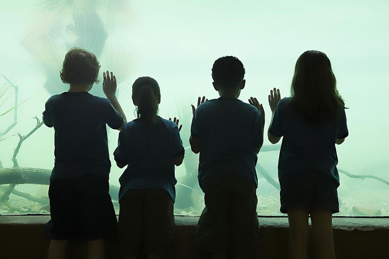 Kids in aquarium