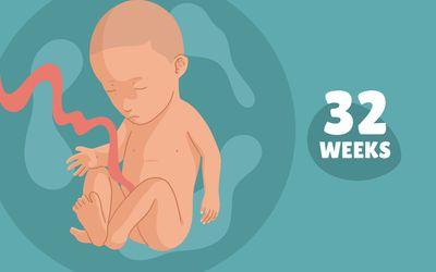 Pregnancy Week by Week: Week 32