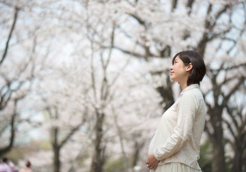 Pregnant woman under cherry blossom trees