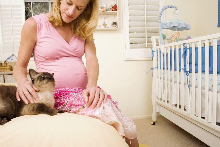 Pregnant woman petting cat