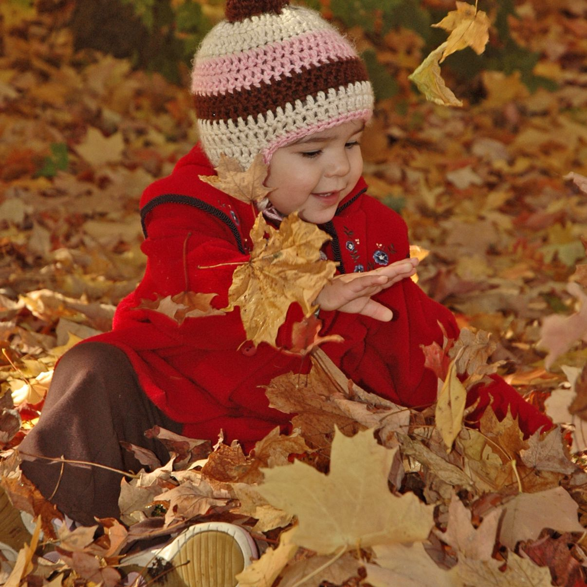 Fall Color Photoshoot Ideas of Your Child