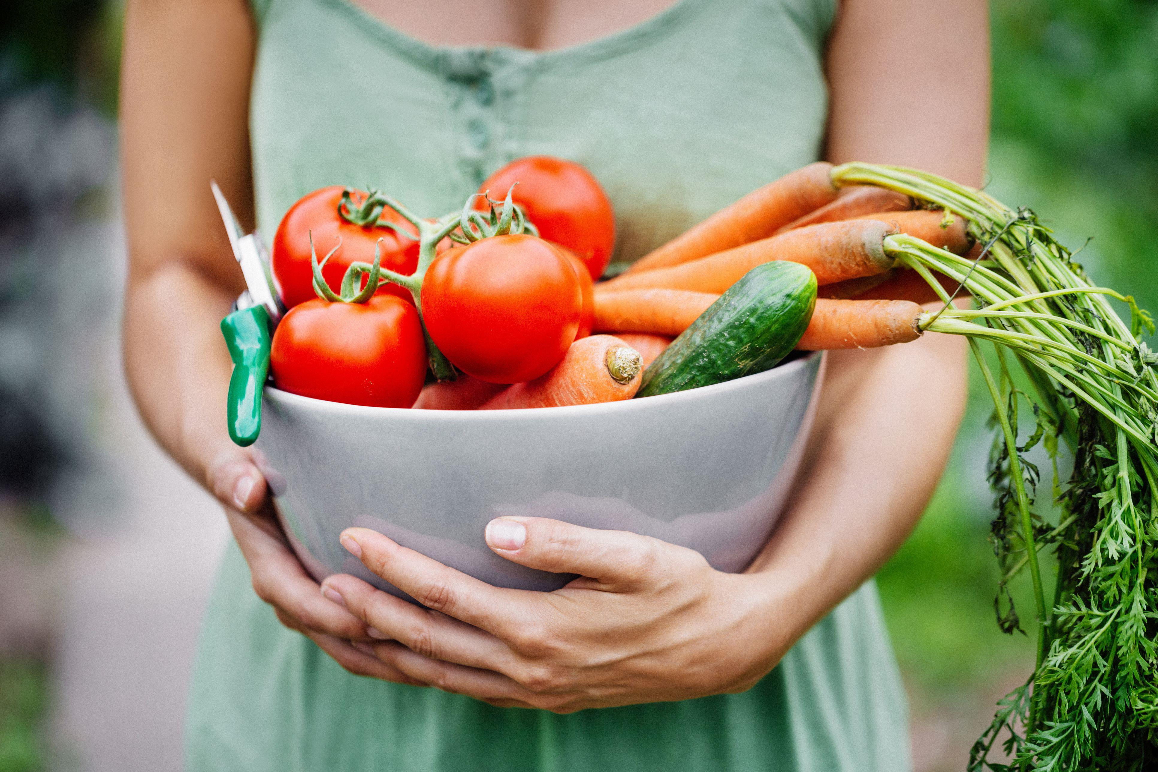 Woman holding fresh harvest vegetables