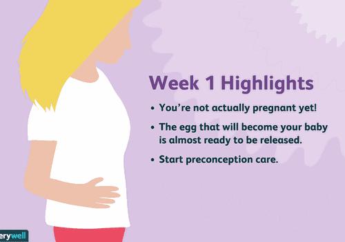 week 1 pregnancy highlights