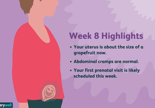 week 8 pregnancy highlights
