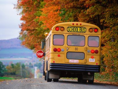Don't let your child miss the school bus every day on purpose.