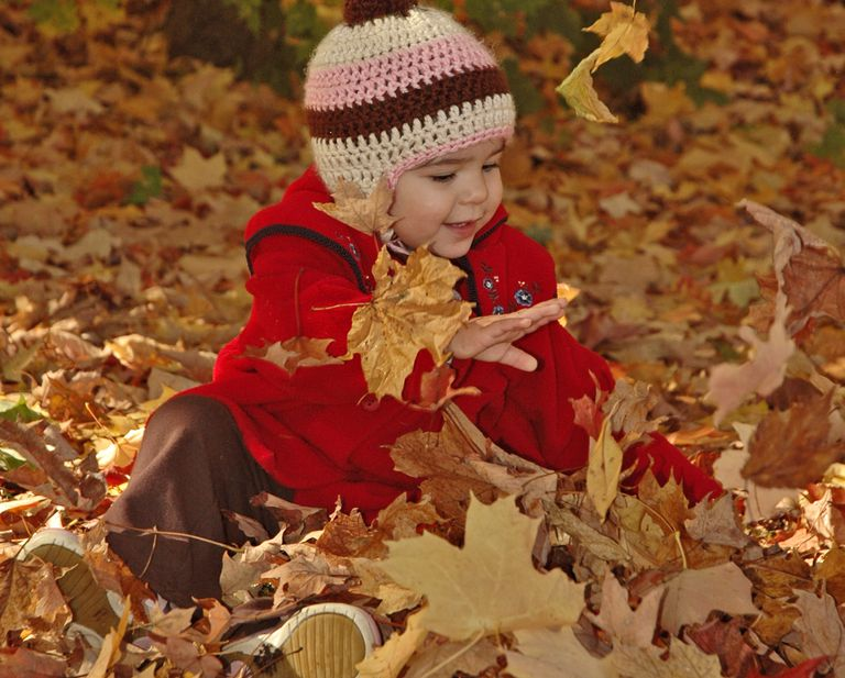 Fall Color Photoshoot Ideas
