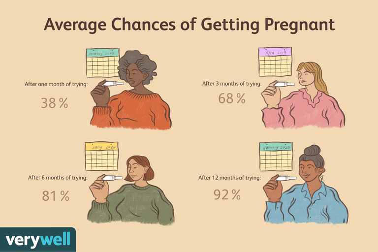 Average chances of getting pregnant