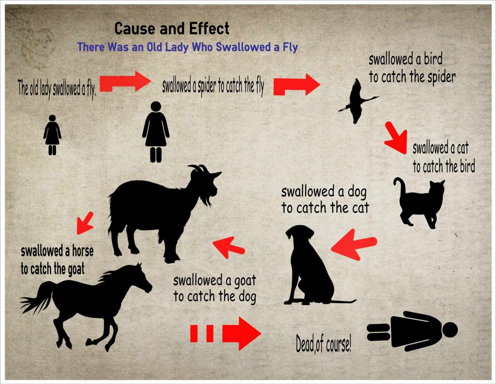 Cause and effect illustrated with the story of the old lady who swallowed a fly