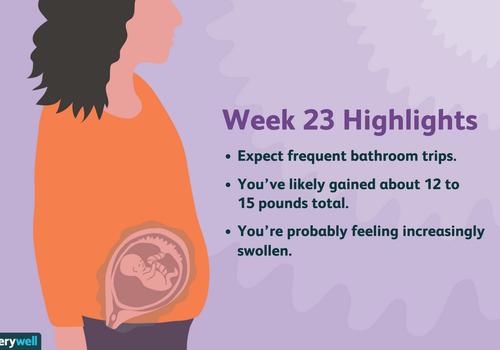 week 23 pregnancy highlights