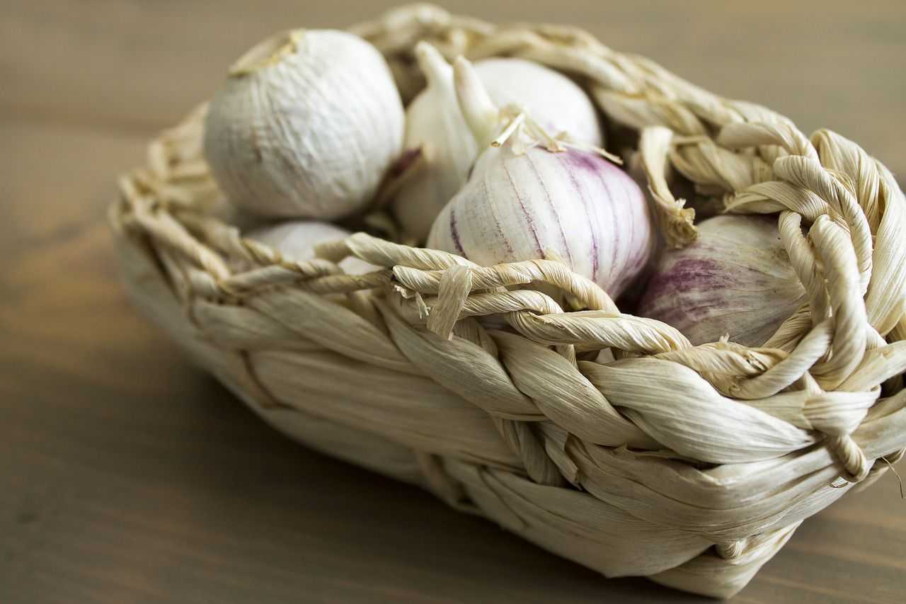Top 10 Foods That Boost Your Immune System