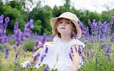 Little girl sitting in a field of purple flowers